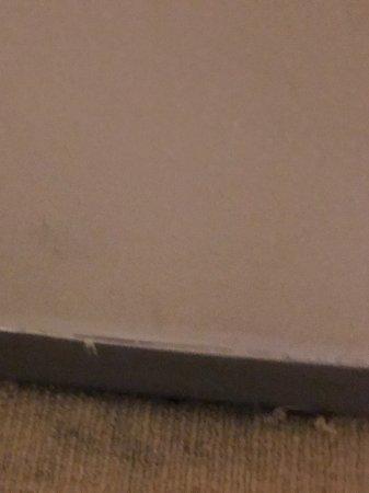 كويست جوردن بليس: Filthy carpet and skirting boards