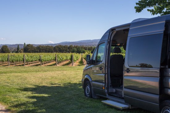 Mornington, Australia: Elevate Wine Tours - Transportation