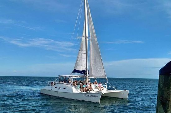 Catamaran Snorkel and Dolphin Watch Tour on The Footloose: 9:30 am Catamaran Snorkel and Dolphin Watch Tour