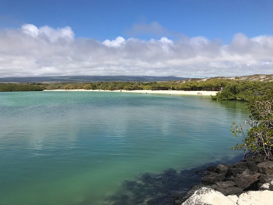 Galapagos Beach At Tortuga Bay Santa Cruz All You Need