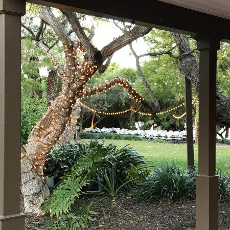 Los Fresnos, TX: photo3.jpg