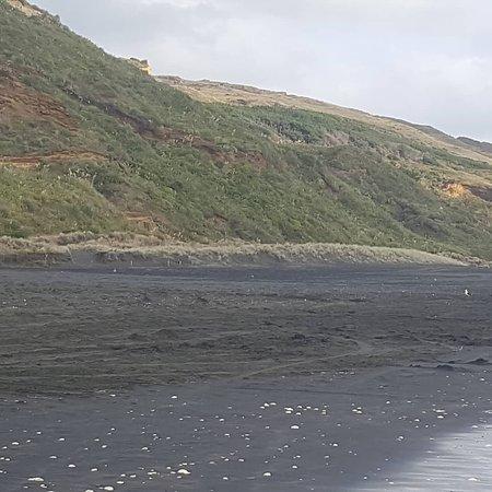 Waiuku, Nya Zeeland: IMG_20180113_224431_430_large.jpg