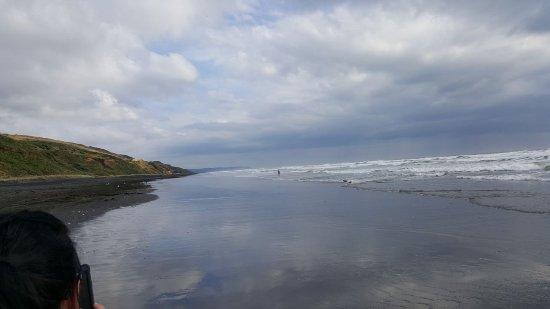 Waiuku, Nya Zeeland: IMG-20180113-WA0020_large.jpg