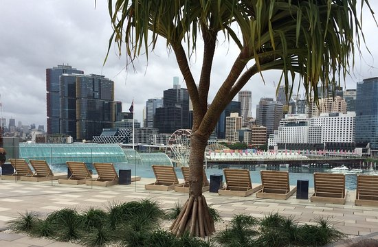 Sofitel Sydney Darling Harbour Updated 2018 Hotel Reviews Price Comparison Australia