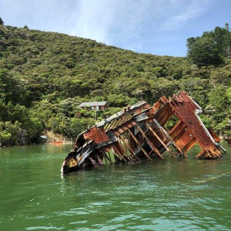 Kenepuru, Neuseeland: photo2.jpg