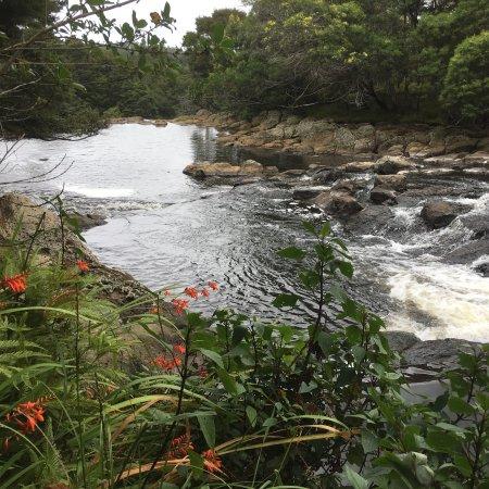 Kerikeri, Nueva Zelanda: photo1.jpg