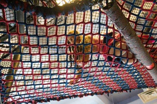 The Building for Kids: подъем на второй этаж
