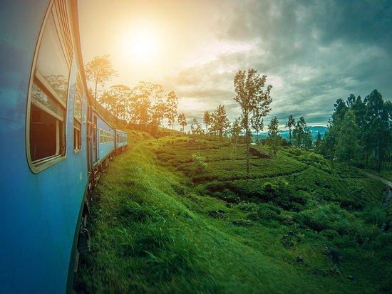 Worldline Travels