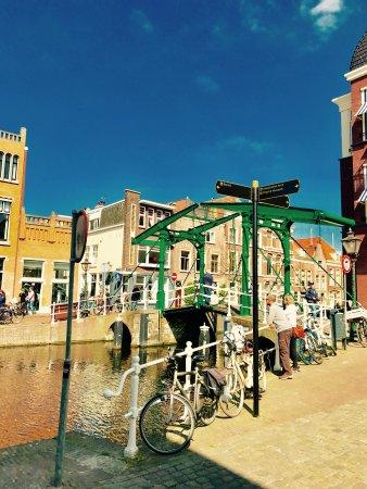 Dutchdayout.nl