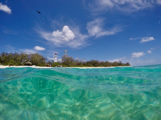 Lady Elliot Island, Australia: photo4.jpg