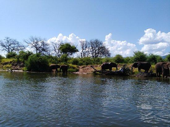 Chirundu, Zambiya: IMG_20180121_150716_large.jpg