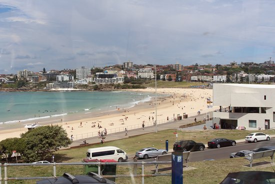 Holiday Inn Darling Harbour : Get the hop on hop off bus to Bondi beach!