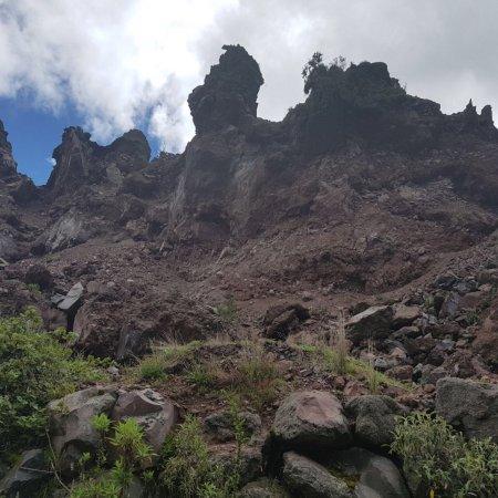Antisana Ecological Reserve: photo2.jpg