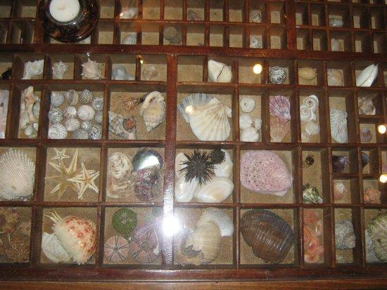 Bochali, اليونان: ... collection...