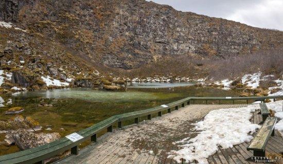 Asbyrgi, أيسلندا: Ущелье Аусбирги