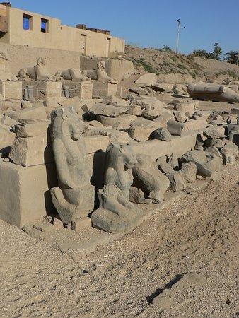 Temple of Mut: Sekhmet beside Sekhmet...