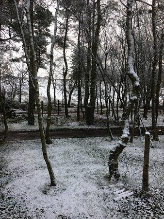 Darley Moor, UK: Snow