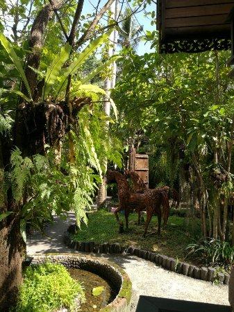 Baan Habeebee Resort: IMG_20180110_142029_large.jpg