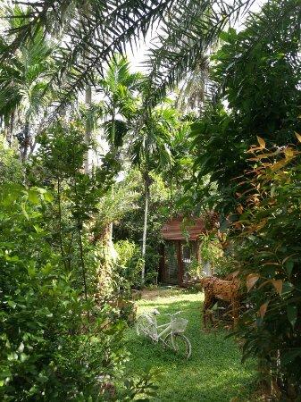 Baan Habeebee Resort: IMG_20180110_152505_large.jpg