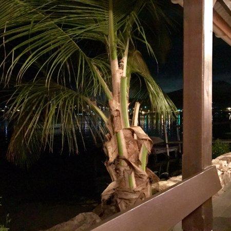 Falmouth, Antigua: photo7.jpg
