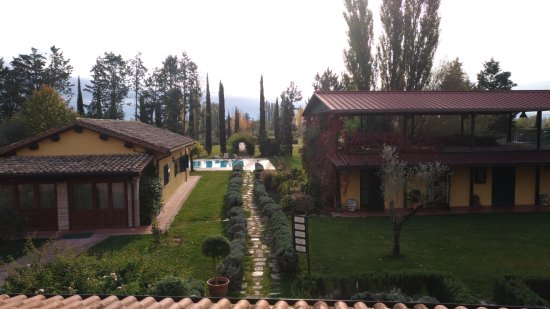 Tordandrea, Italia: Vista sulla piscina e le vecchie scuderie