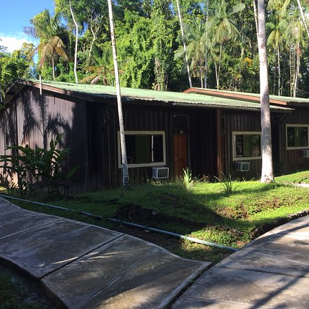 Ceiba Tops Lodge by Explorama: Great resort in the Amazon with AC, 24 hr power and WiFi