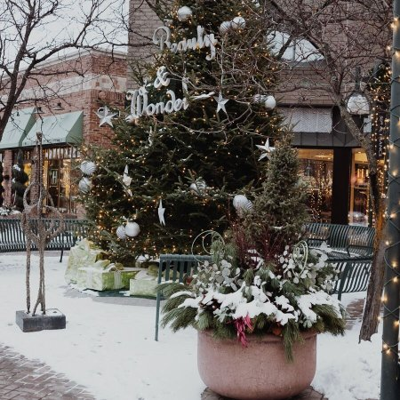 Edina, MN: Festive during the holidays