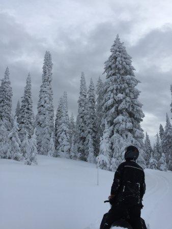 Yellowstone Adventures: Beautiful
