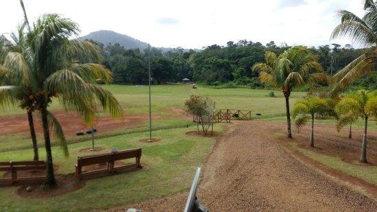 Kabalebo, Surinam: 20180120_103836_large.jpg