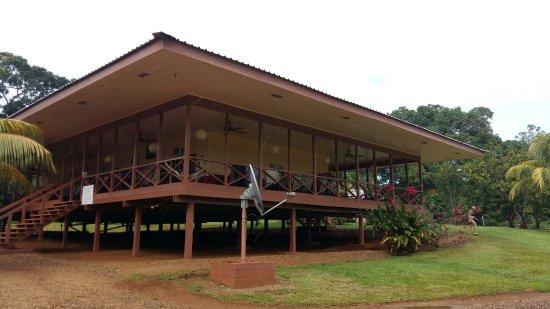 Kabalebo, Surinam: 20180119_162029_large.jpg
