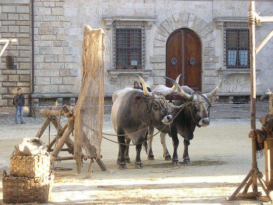 Scena di un film che giravano a Montepulciano