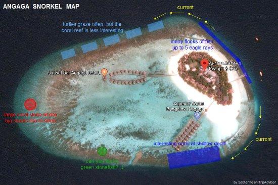 Angaga Island: ANGAGA SNORKEL MAP 2018