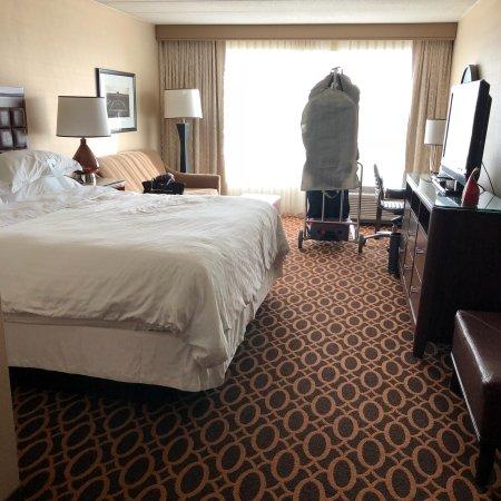 Sheraton Ann Arbor Hotel: photo1.jpg