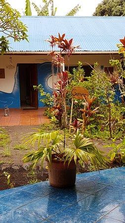 Hotel Gomero: jardines