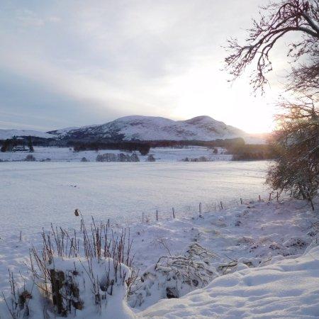 Wildside Highland Lodges: photo9.jpg