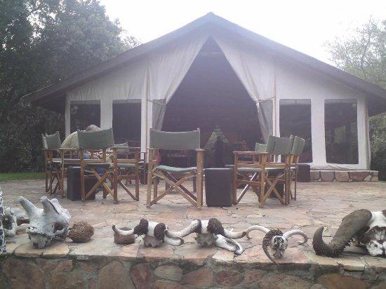 Sekenani Camp: FB_IMG_1516655264640_large.jpg