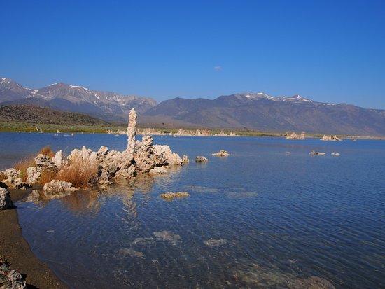 Lake View Lodge: Mono Lake