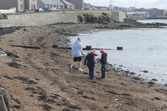 Holm, UK: collecting shells