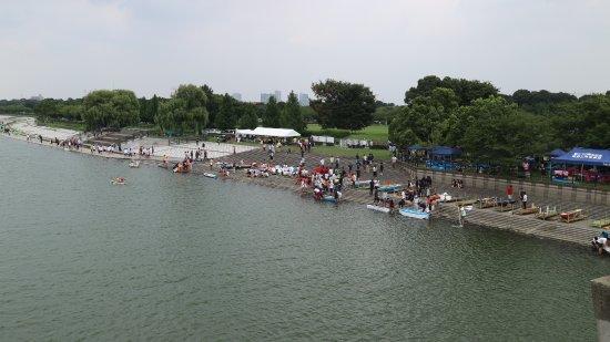 Saiko Doman Green Park: صورة من الكوبري في وسط البحيرة للحديقة