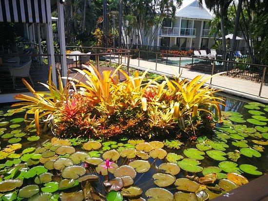 Oaks Resort Port Douglas Resmi