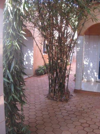 Koudougou, Burkina Faso: compact but green courtyard