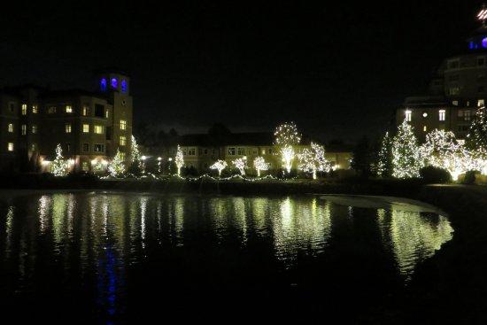 Christmas Time Lights Around The Lake On Grounds