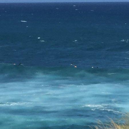 Paia, هاواي: photo1.jpg