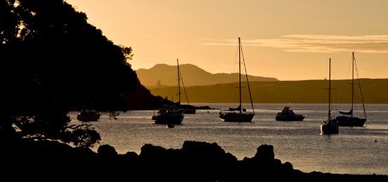 Waiheke Custom Wine Tours: Matiatia harbour at dusk