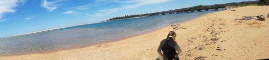 Bega, Australia: Panorama
