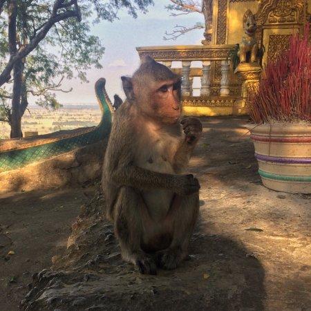Battambang Bat Caves : photo0.jpg