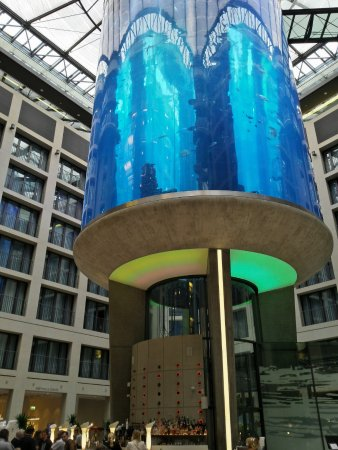Radisson Blu Hotel, Berlin: A lift goes up in the centre of the fish tank.