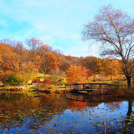 Meadowlark Botanical Garden Vienna Va Updated 2018 All You Need To Know Before You Go With