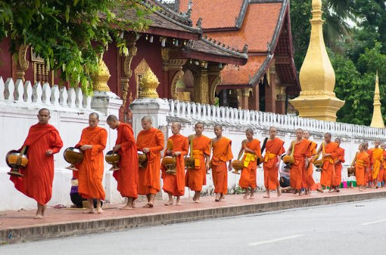 Full Day Alms offering and Pak Ou Caves (lunch included)