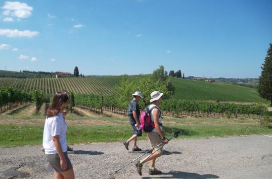 Tuscany Hiking Tour from Florence...